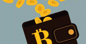 portefeuille Bitcoin image